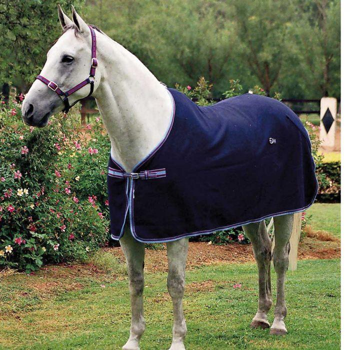 Zilco Defender Wool Rug