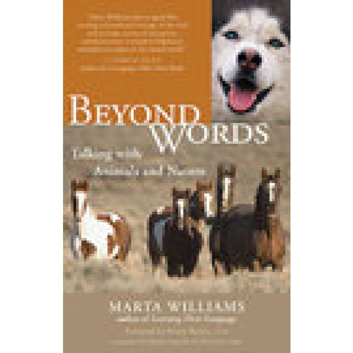 Beyond Words by Marta WILLIAMS