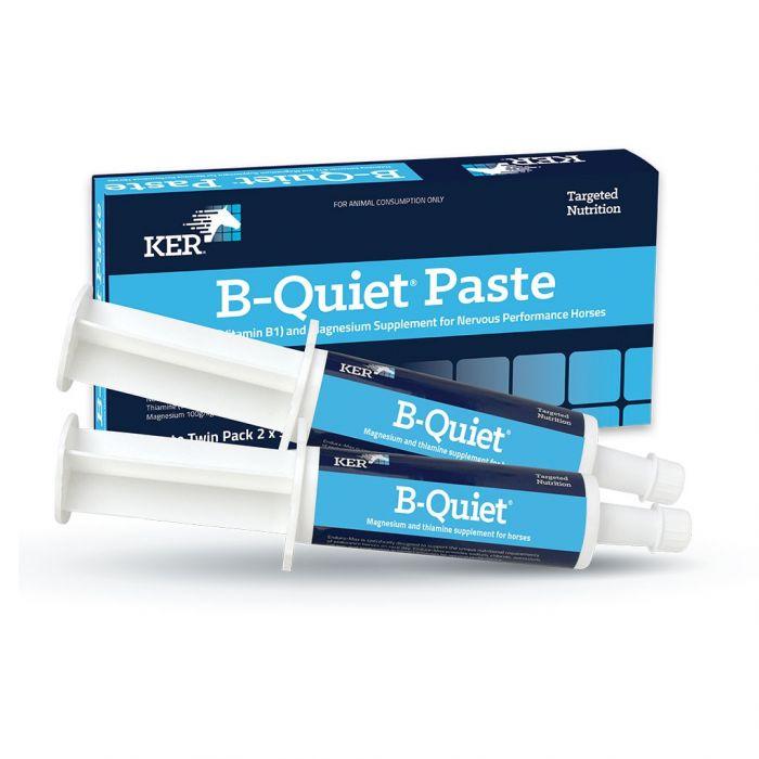 KER B-Quiet Paste 30g - Twin Pack