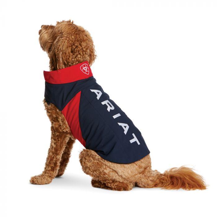 Team Softshell Dog Jacket - Red / Navy