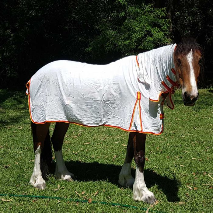 """Equestrian Flag Combo - 3'0"""" & 3'3"""" Only"""