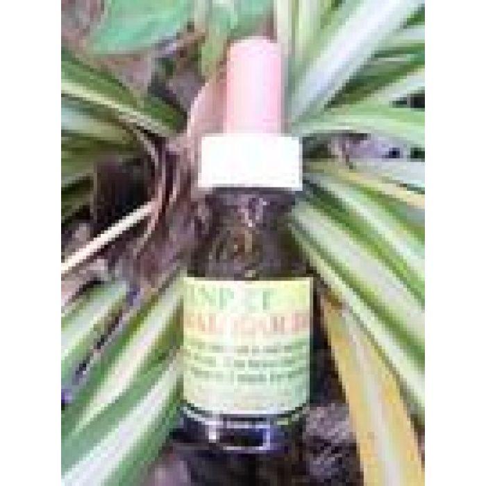 Greenpet Herbal Ear Drops