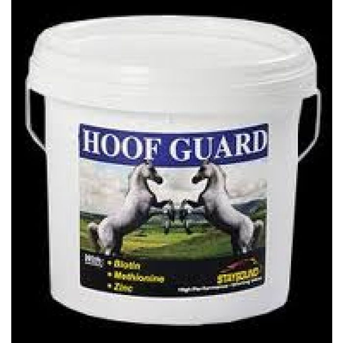 Staysound Hoof Guard