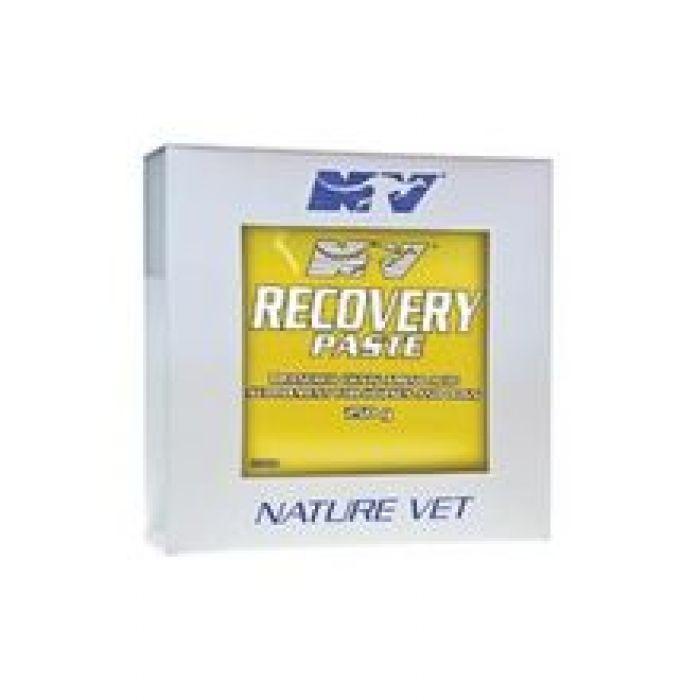 Ceva Recovery Paste 250Ml